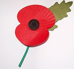A poppy to commemorate the dead of World War I